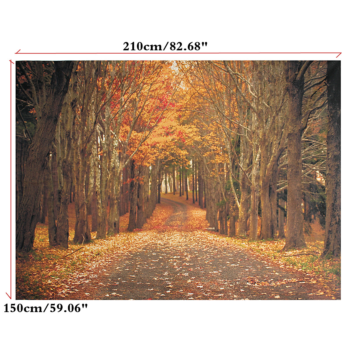 Vinyl háttér fotózáshoz.Őszi erdei utat ábrázoló stúdió háttér 210X150cm 1142370