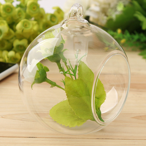 Ball Shape Hanging Glass Vase Succulent Plants Micro Landscape Bottle