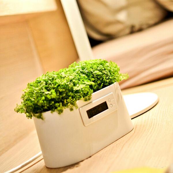 Mini Power Station Creative DIY Plant Digital Clock Desktop Potting