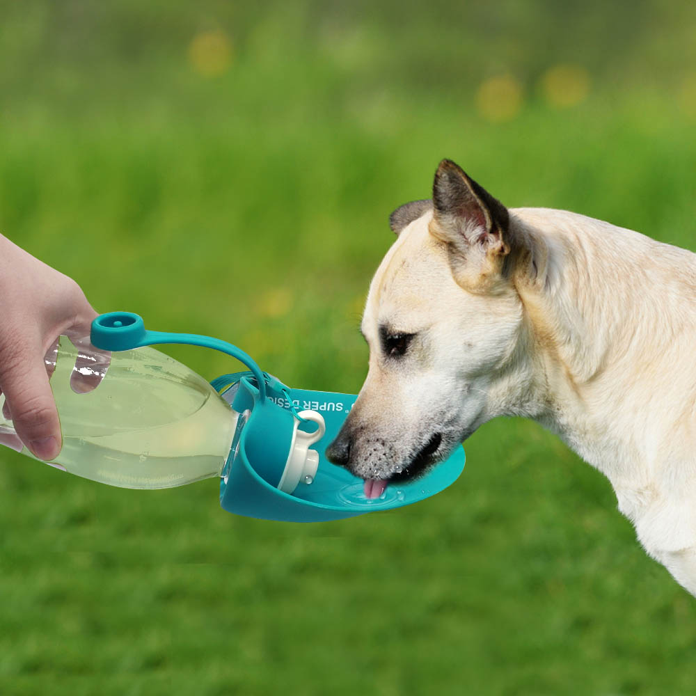 650ml Sport Portable Leaf Pet Dog Water Bottle Expandable Silicone Travel Dog Bottles Bowl For Puppy Cat