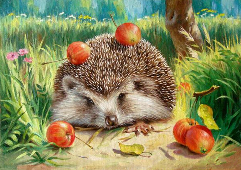 Hedgehog Digital Oil Painting DIY Oil Painting By Numbers Kits Frameless Canvas Wall Decor Gift 40x50cm