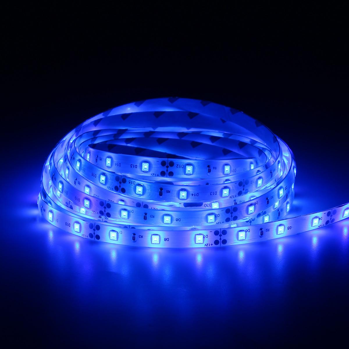 5M SMD3528 Flexible Blue 300 LED Strip Light Lamp Waterproof Home Car Decor DC12V