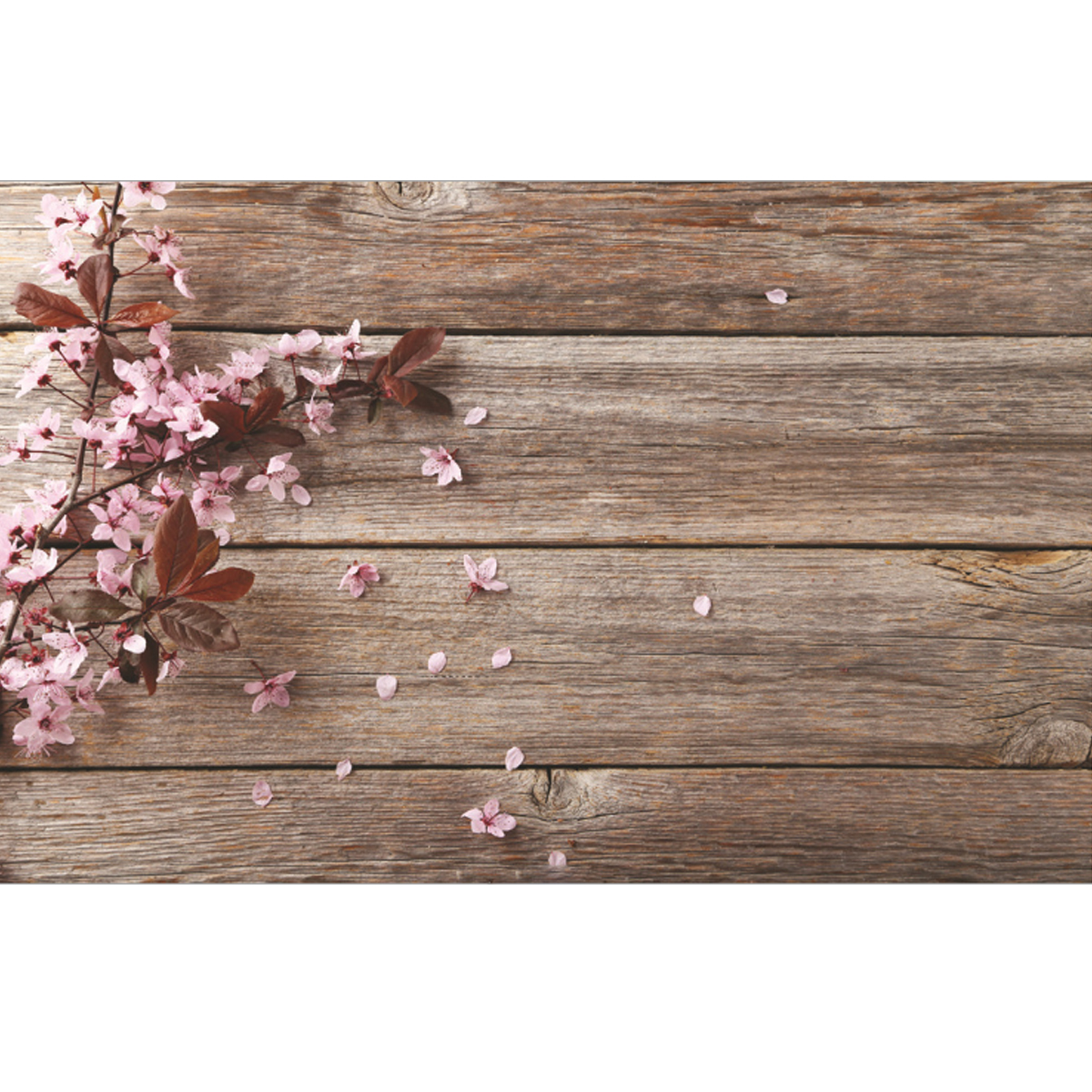 5x3FT Pink Flower Wood Wall Photography Backdrop Studio Prop Background