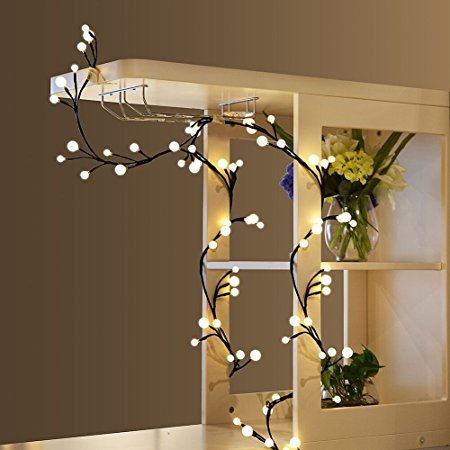ARILUX® 2.5M Warm White Rattan Global String Light for Christmas Party Patio US UK EU Plug DC24V