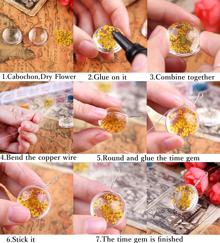 3 Dry Flowers Plant Specimens Time Gem Dijiao Glue DIY Jewelry Findings Tools