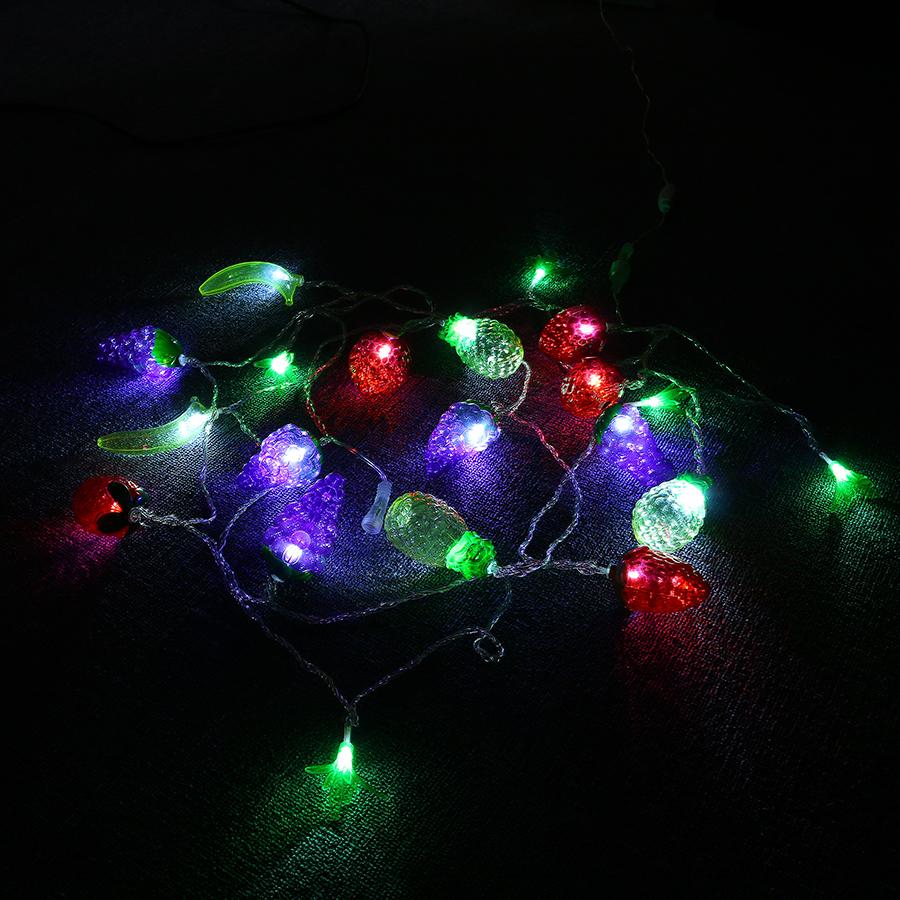 KCASA CSL-2 5M 20LED Gradening String Light Party Patio Wedding Decorative Colorful Fruit Light