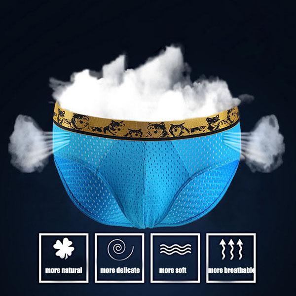 WANGJIANG Mens Summer Sexy Mesh Low Rise Breathable Briefs U Convex Pouch Underwear