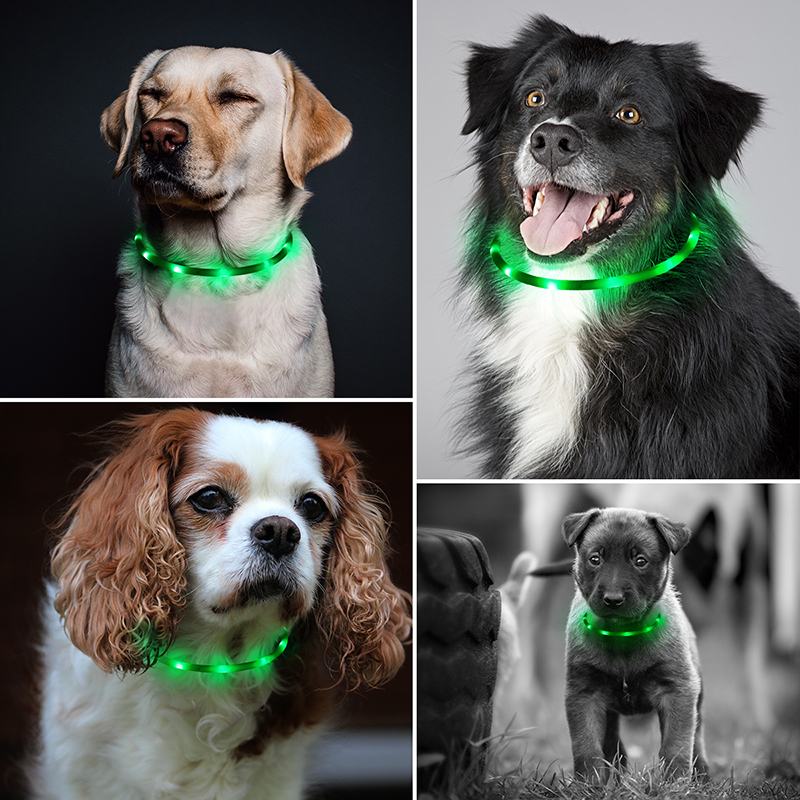 70cm Dog Collar USB Rechargeable Adjustable Length LED Collar Outdoor Hunting Dog Accessories