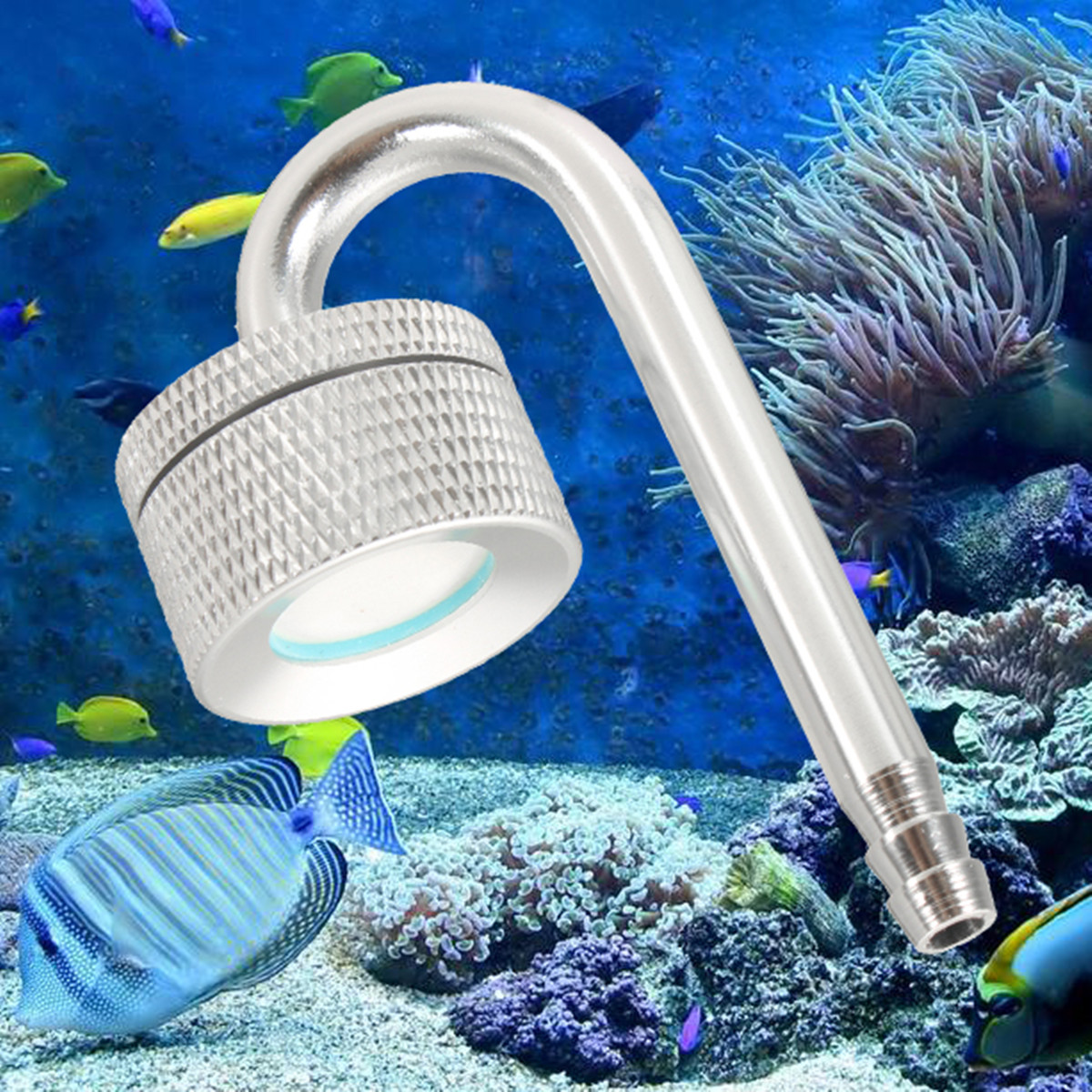 Fish Tank Aquarium Plant Mini Stainless Medal Co2 Diffuser Atomizer