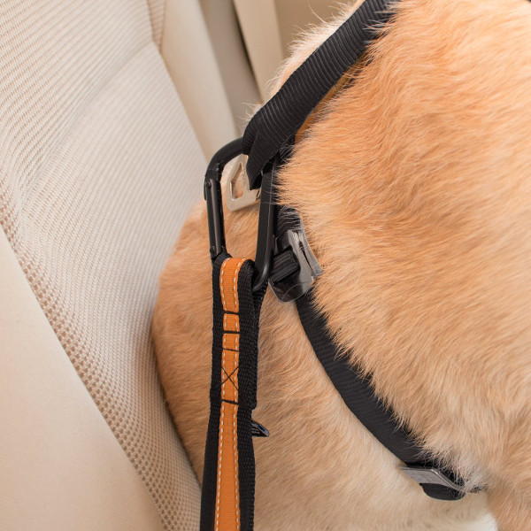 Carosets Dog Cat Seat Belt Puppy Seat Belt Harness Lead Clip Universal for All Cars