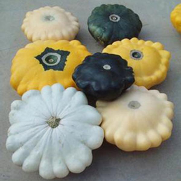 Egrow 10Pcs/Pac Flying Saucer Pumpkin Seeds Fruits Vegetable Seeds Garden Decoration Bonsai