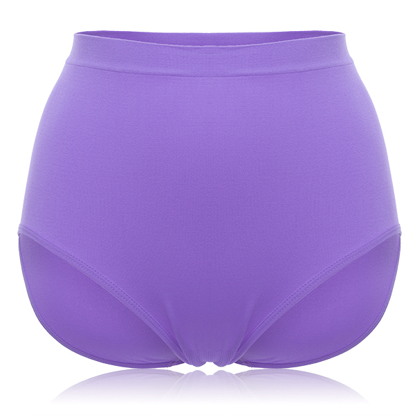 Soft High Waisted Tummy Slimming Panties Lingerie