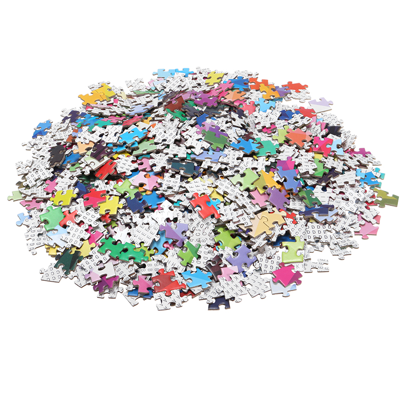 1000 Grain Intelligent Round Puzzle Games For Adult Children Plastic Baby Kids Educational Toys