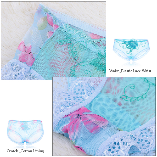 Lace Embroidery Transprent Seduced Panties