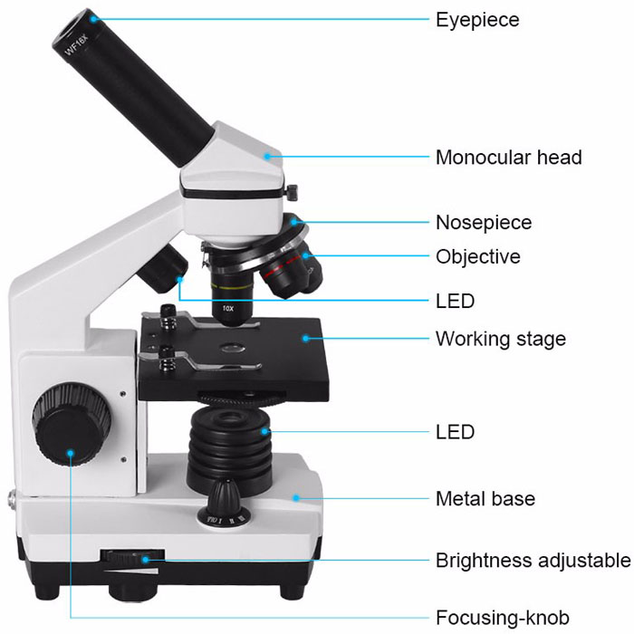 Professional Biological Microscope 64X-640X Up/Bottom LED Student Science Educational Lab Home Monocular Microscope