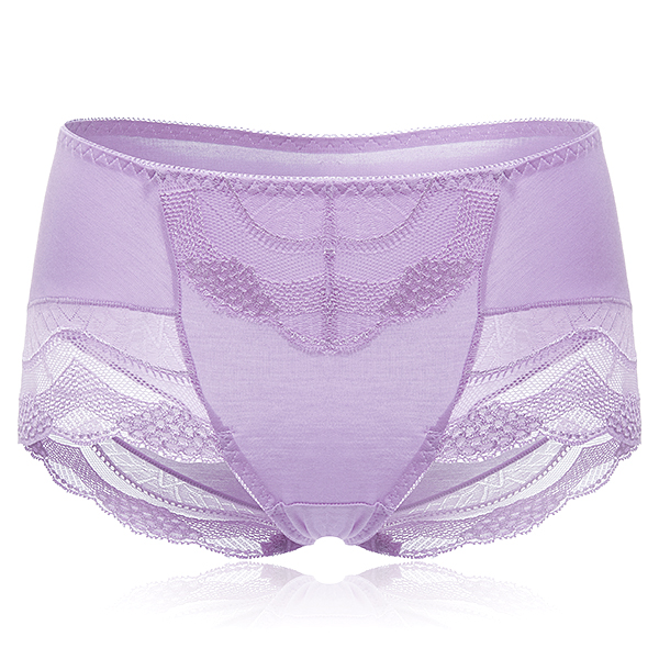 Sexy Cozy Breathable Hip Lifting Lace Embroidery Mid Rise Briefs Panty For Women