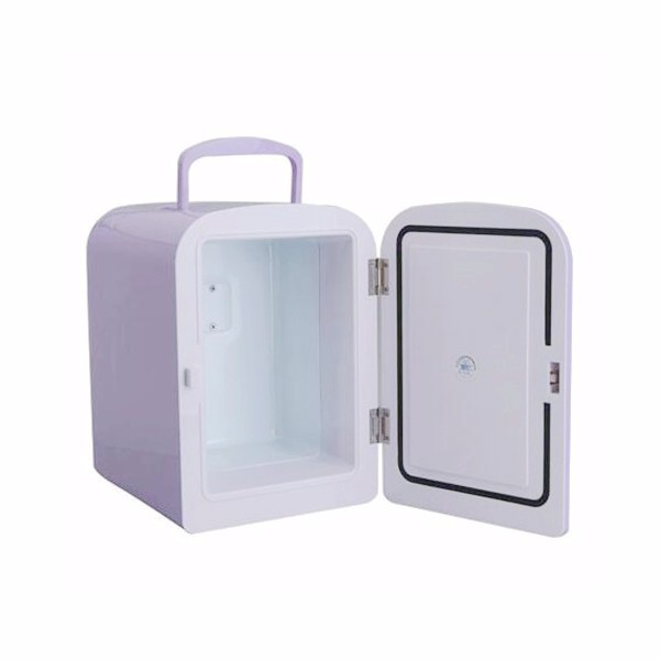 4L Car Mini Ice Box Home Refrigerator Mini Fridge 12V 220V Cool And Warm Contain