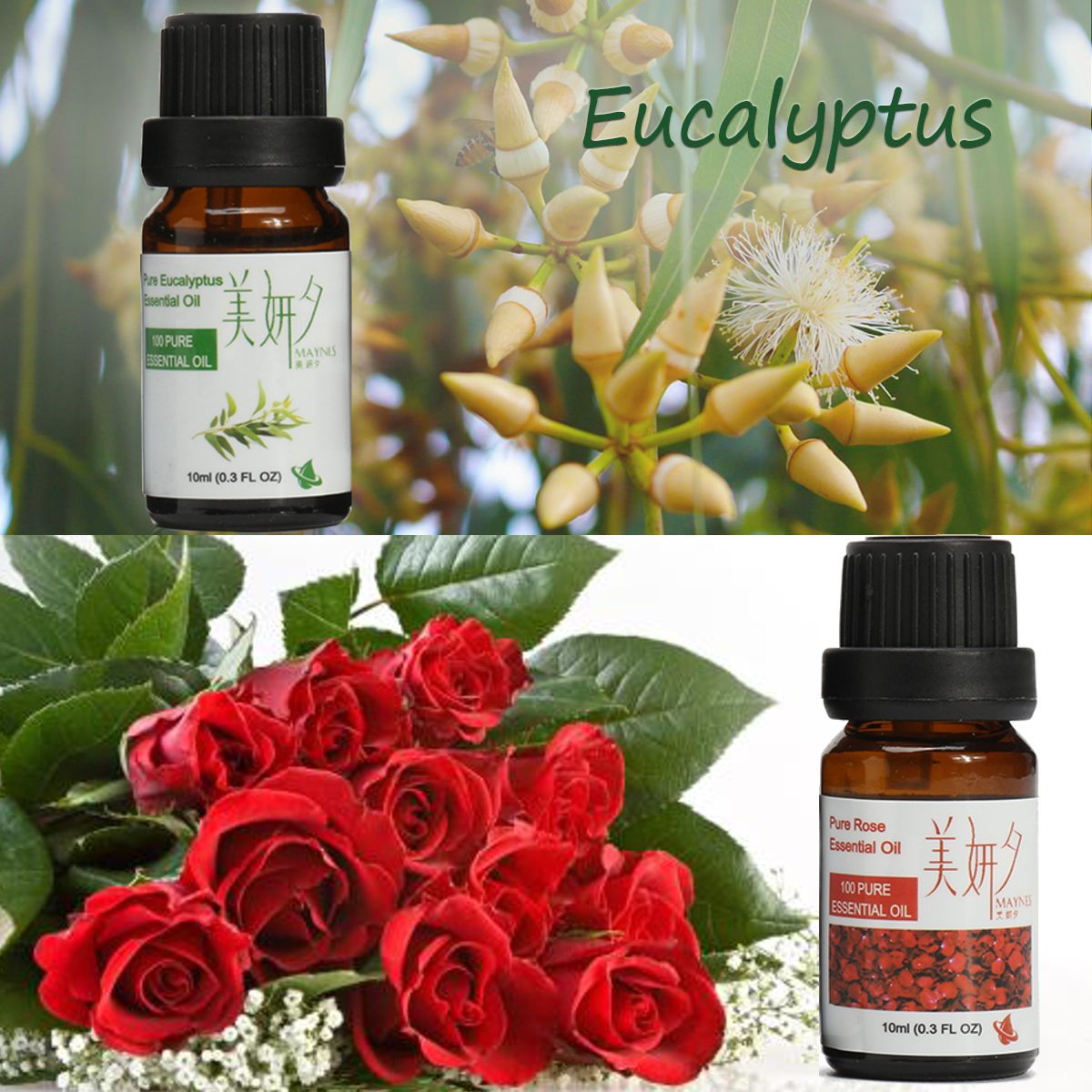 6Pcs Natural Aromatherapy Essential Oils Pure Therapeutic Plant Essential Set 10ml