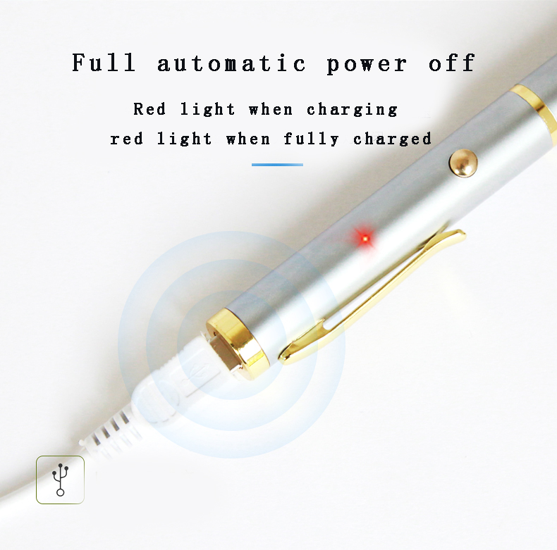 H12 Short Highlight USB Laser Flashlight Pen For Projector Green and Red Light Leaser Pen