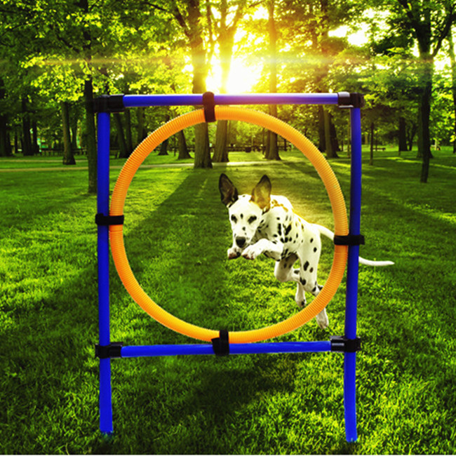 Dog Training Jump Hoop Pet Cat Outdoor Games Exercise Equipment Training Agility Obedience Equipment