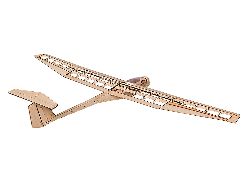 DW Wing Griffin 1550mm Wingspan Balsa Wood Glider RC Airplane KIT