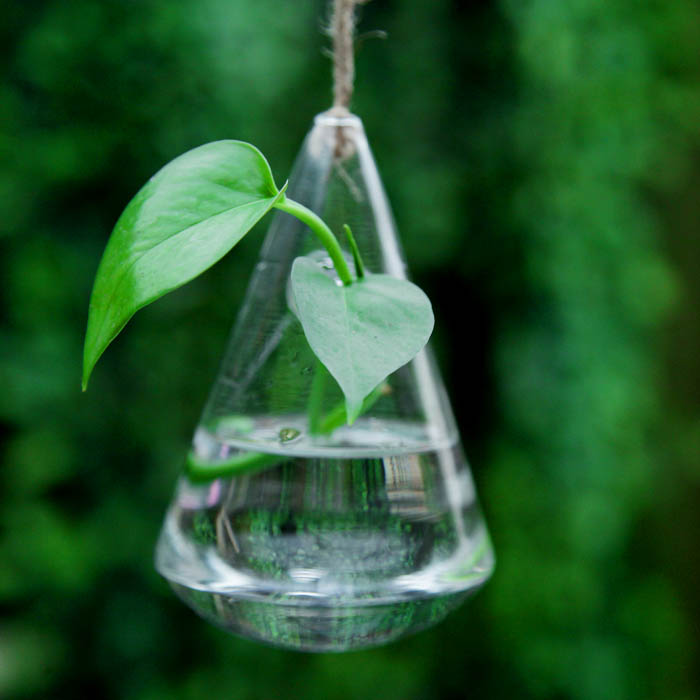 Hanging Water Drop Shaped Glass Hydroponics Flower Vase Home Garden Wedding Party Decoration