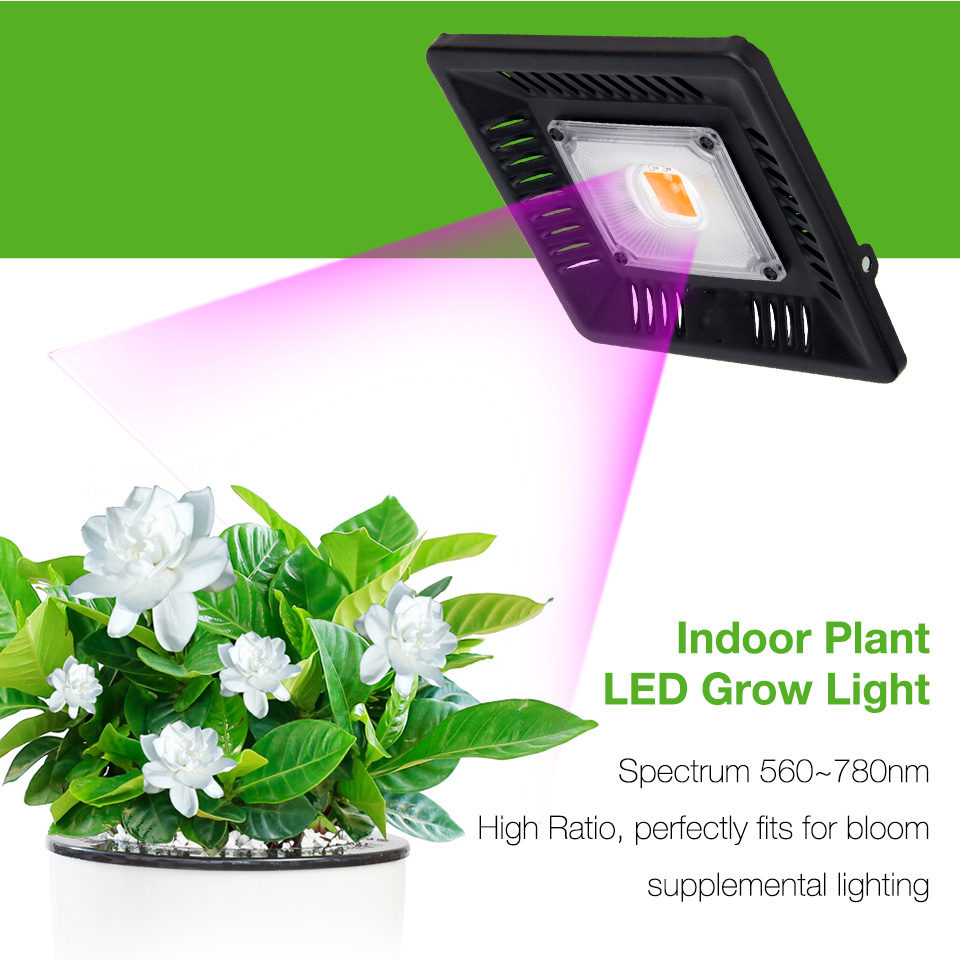 Indoor Plants 50W Single Cob LED Grow Lights Full Spectrum Ultra-Thin Waterproof Hang Growth Lamp