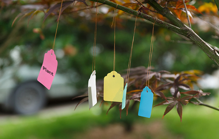 50pcs Gardening Plant Waterproof Hanging Tags Flower Vegetable Planting Label Tools