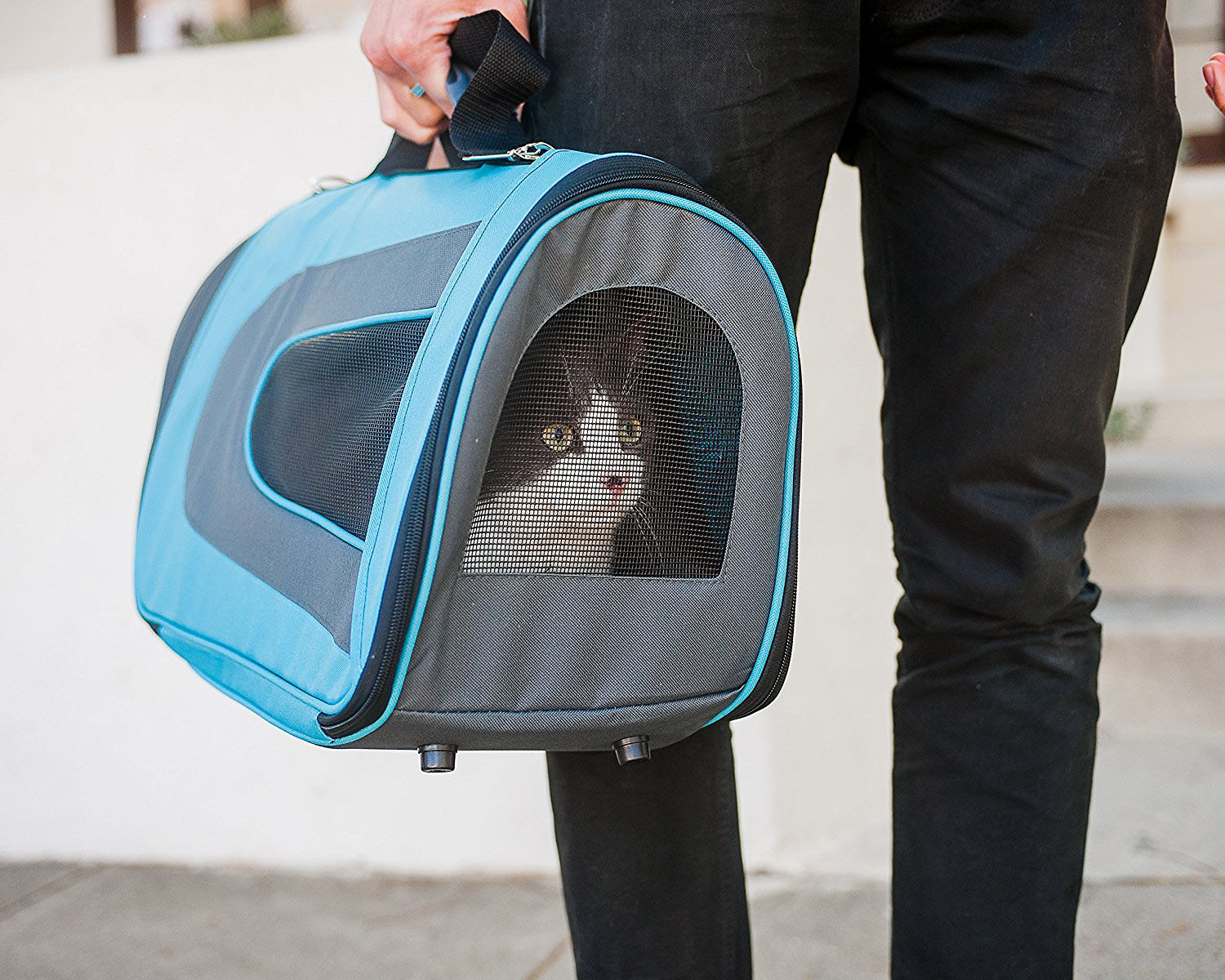 Soft-Sided Cat Carrier Small Dogs Pet Travel Portable Kennel with Comfortable Padding Inside Pet Bag