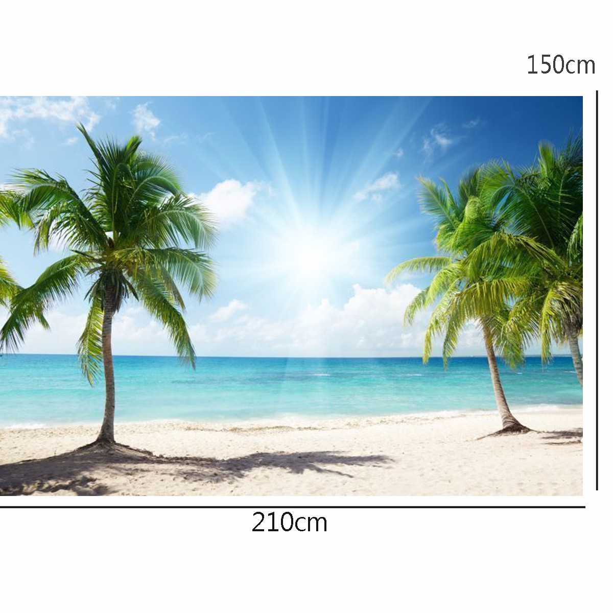 Vinyl Background Cloth Photography Palm Beach Sunshine Studio Backdrop