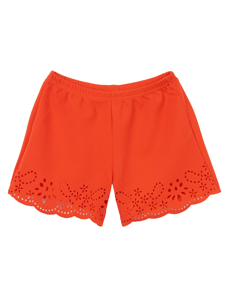 Sexy Casual Crochet Hollow Out Stretch Waist Shorts For Women
