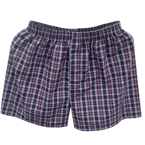 Arrow Pants Checkered Soft Comfortable Cotton Boxers Briefs
