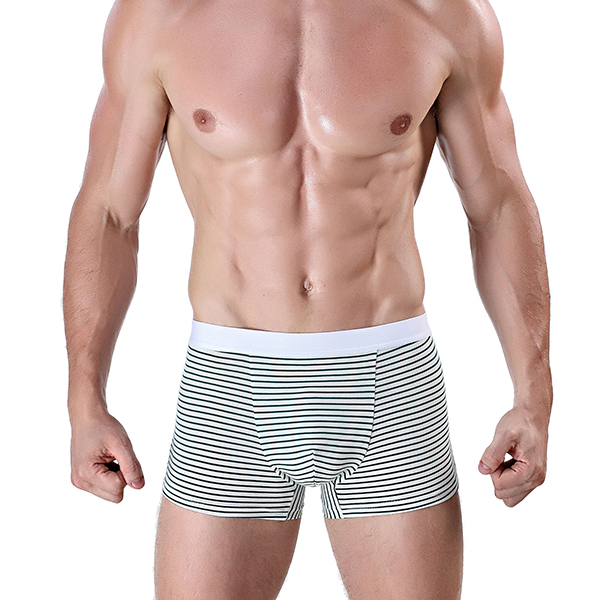 Striped Printing Wide Waistband Seamless Cotton Boxers Brief