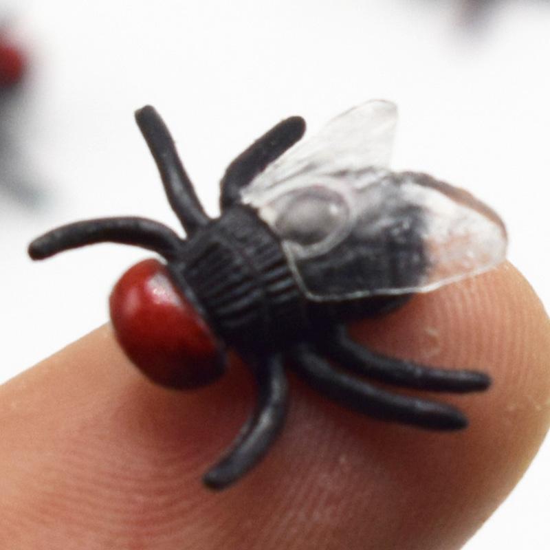 Đồ Chơi Tranh Trí Con Rệp Bằng Nhựa Fly Funny Toys