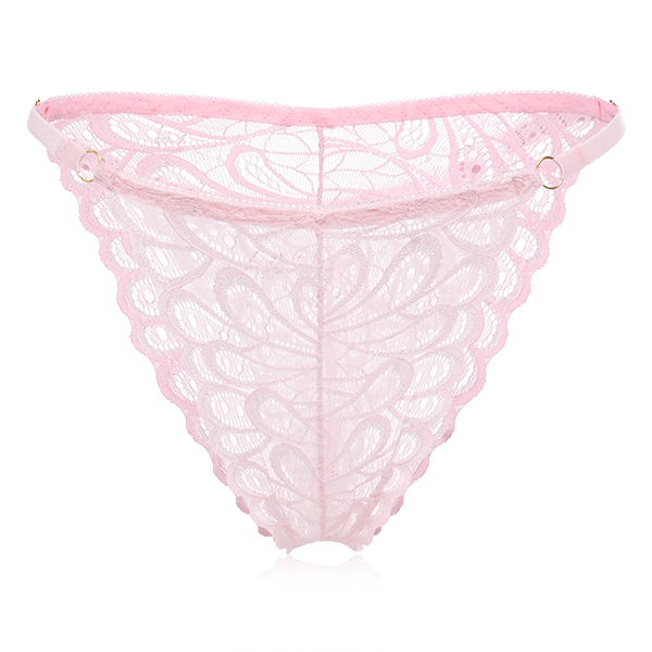 Translucent Lace Low Waist See Through Panties