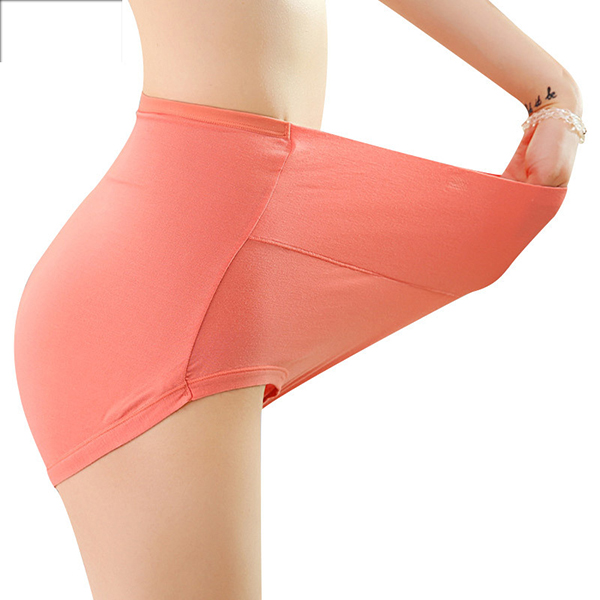 Seamless Soft High Waisted Breathable Panties