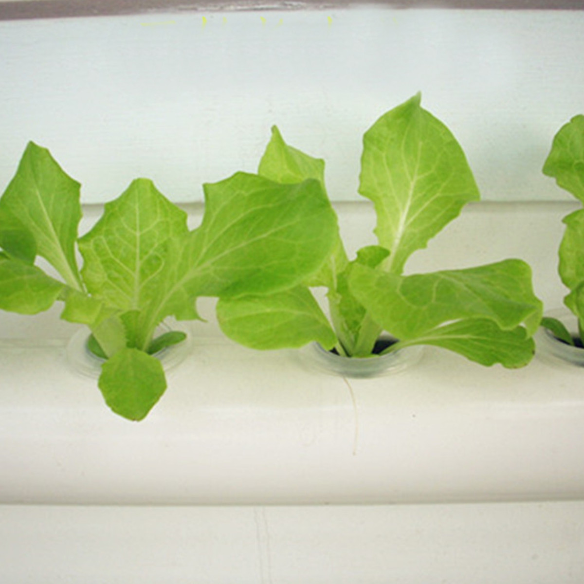 4 Layer 36 Sites Hydroponic Vertical Grow Kit Ebb Flow Deep Water Culture DWC System Garden Vegetable Planting