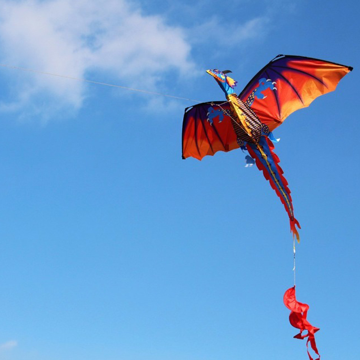 55 Inches Cute Classical Dragon Kite 140cm x 120cm Single Line Kite With Tail