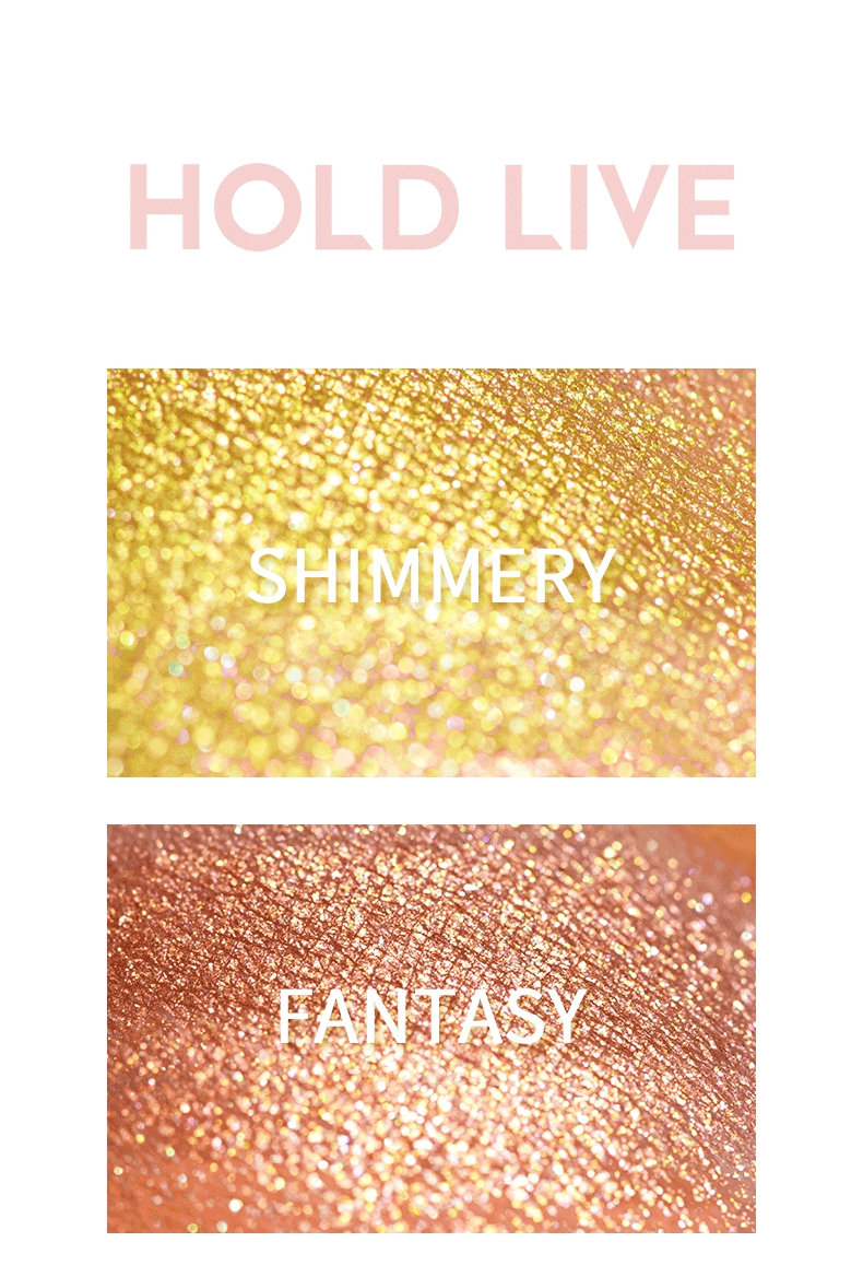 Holdlive Eyeshadow 12 Colors