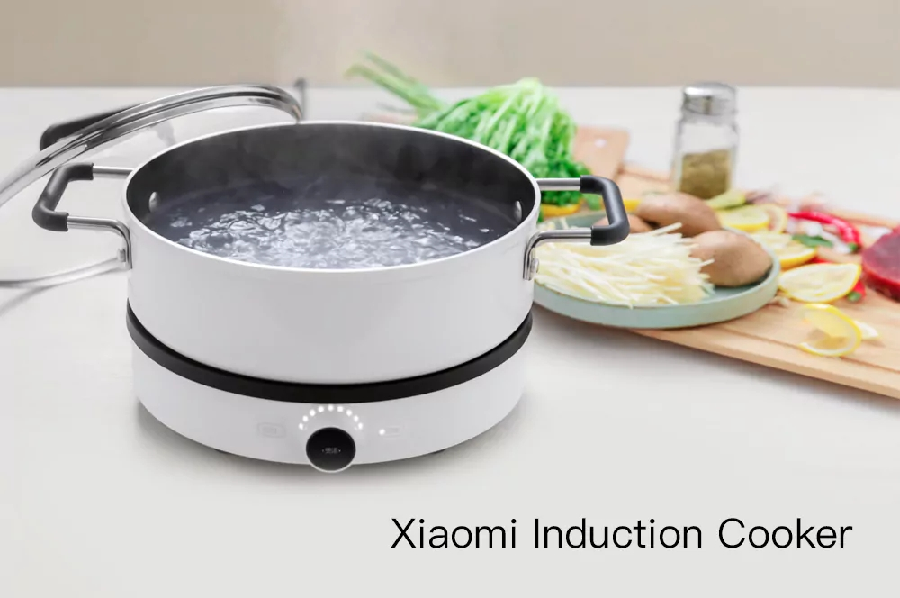 Xiaomi Mijia DCL01CM Dual Frequency Firepower Precise Control Induction Cooker
