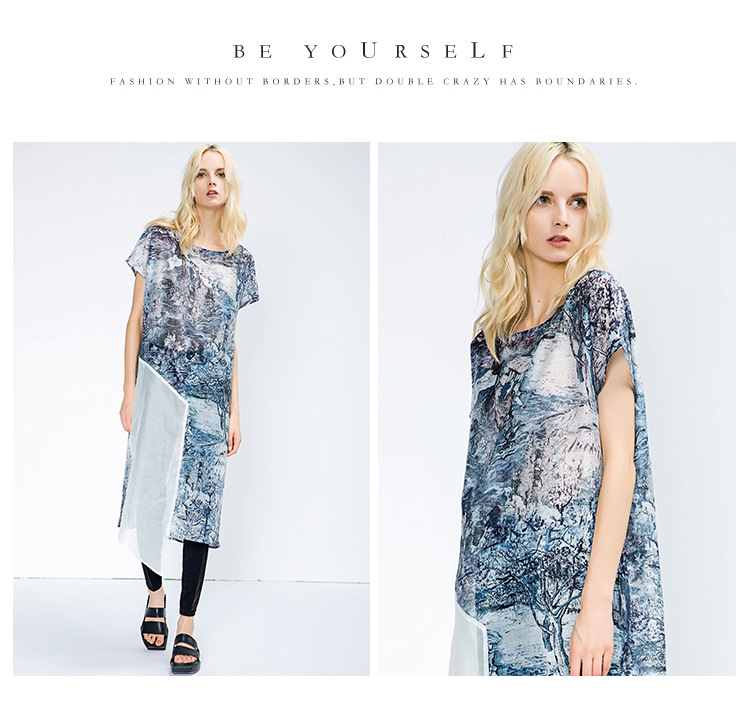 Plus Size Hot Sale Women Elegant Asymmetrical Organza Dress Long Print Dress