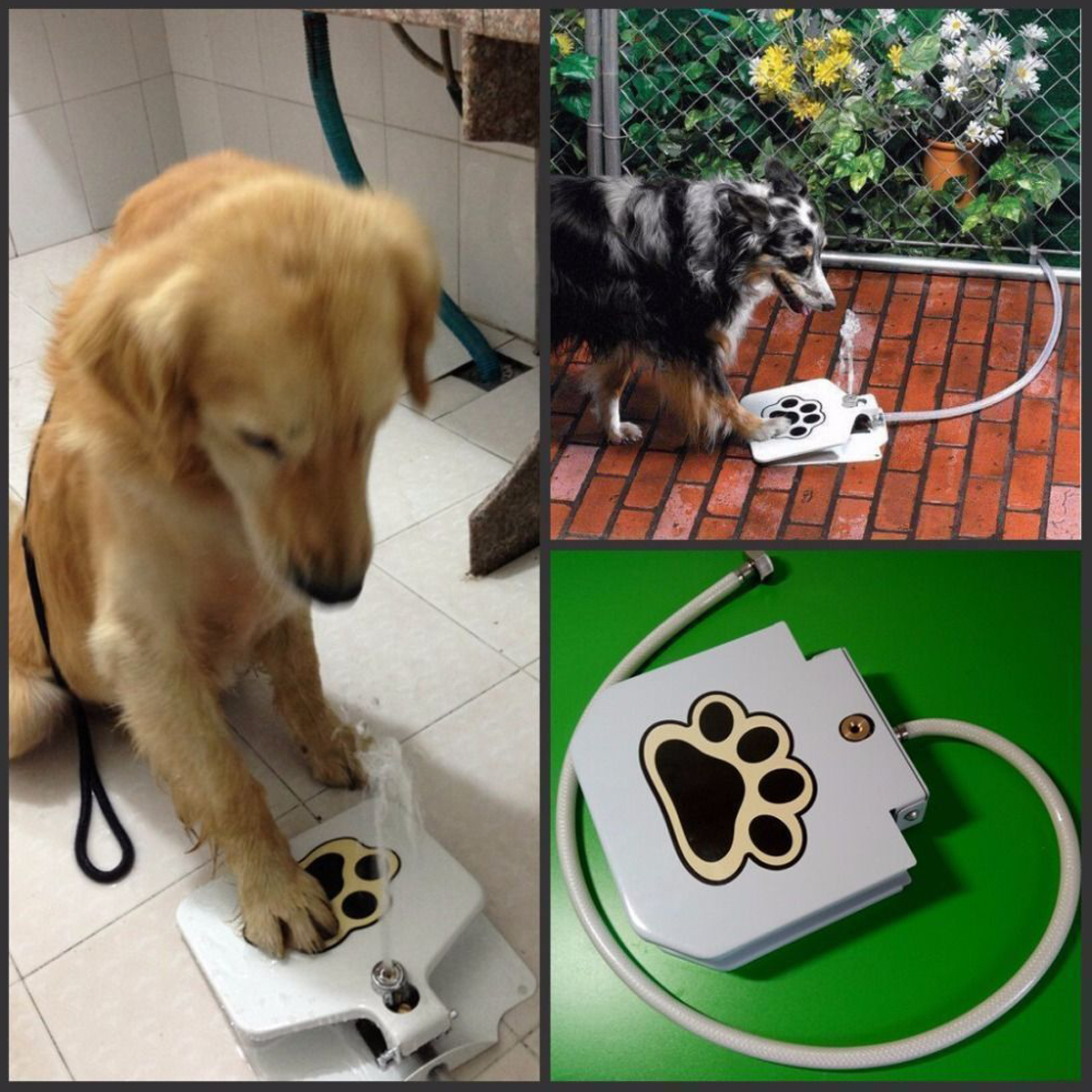 Outdoor Trouble-Free Dog Pet Drinking Doggie Activated Water Fountain Dispenser 100cm Water Pipe