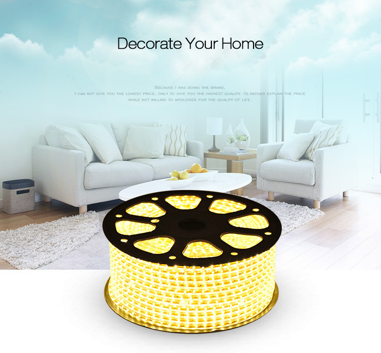 1M 220V LED Strip Light Lamp Christmas Desk Home Decor Lamp Tape TV Background Decorative Lighting