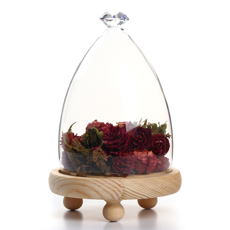 Glass Dome Clothe Display Storage Bell Jar Wooden Base Flower Preservation Vase
