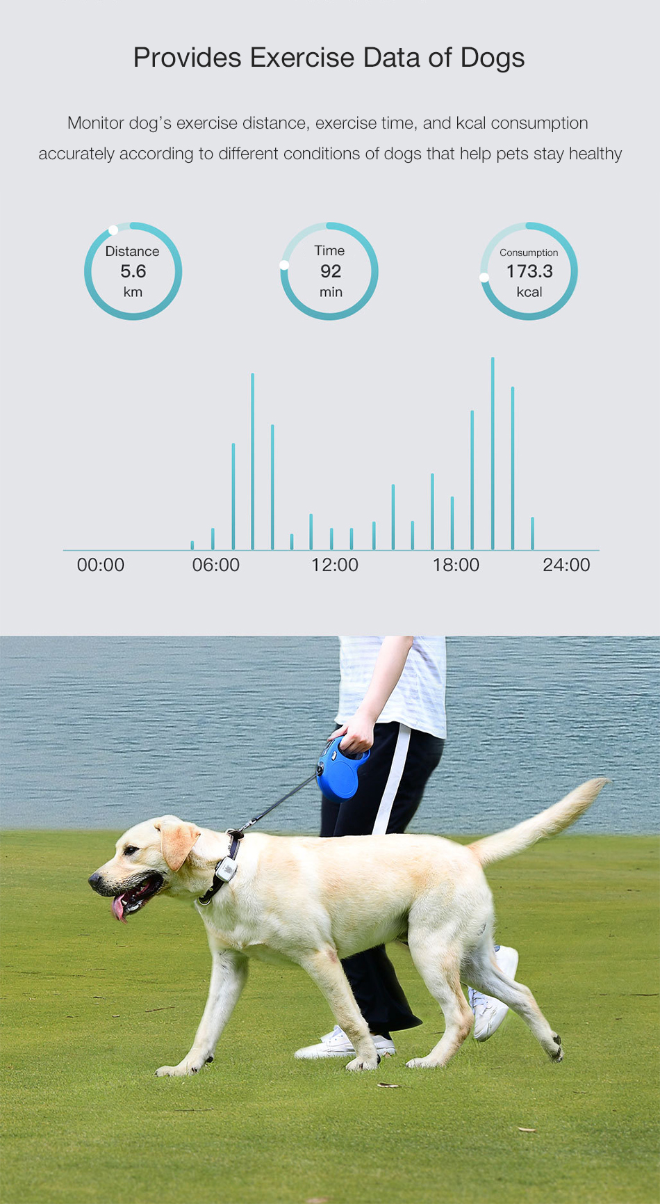 Xiaomi Smart bluetooth Rechargeable Dog Security Anti Lost Locator Dog Pet Tracker with Electric Dog Tag