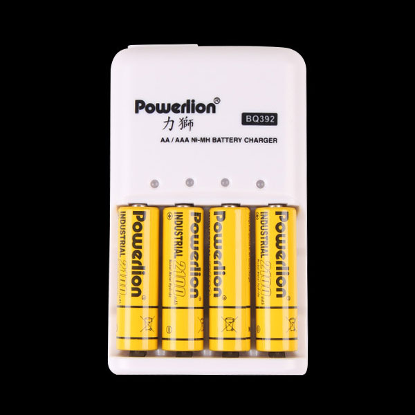 Powerlion BQ392 AA AAA Ni-MH NiCd Rechargeable Battery Charger