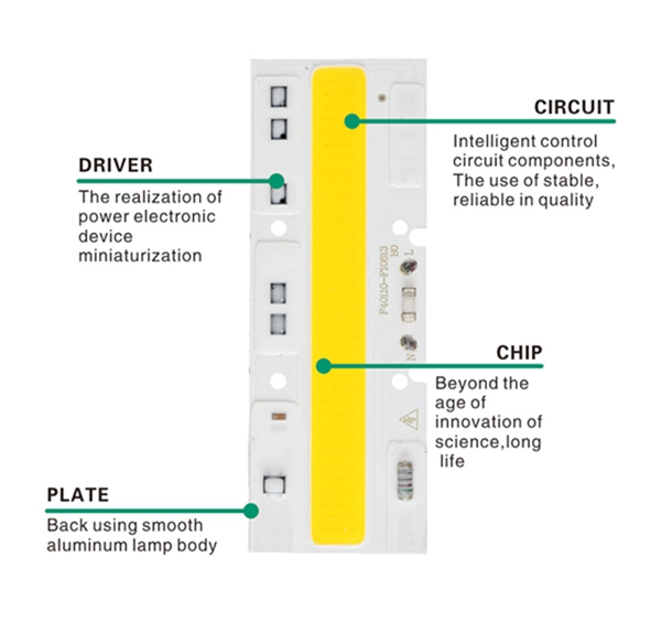 AC110 30W 50W 70W High Power COB LED Chip Smart IC No Driver DIY Warm/White for Flood Light