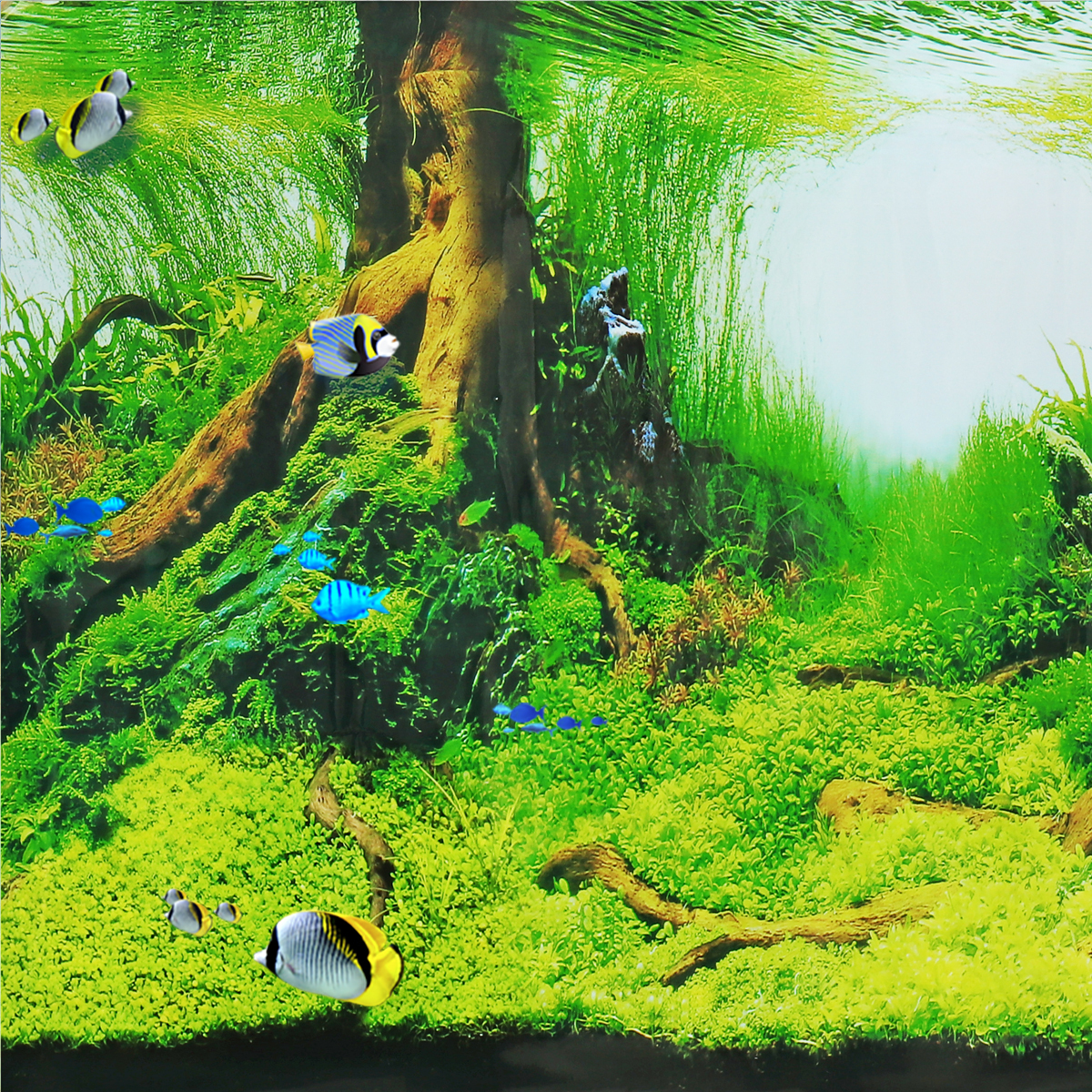 Double Sided Aquarium Background Ocean Grass Tree Root Fish Tank Picture Decorations