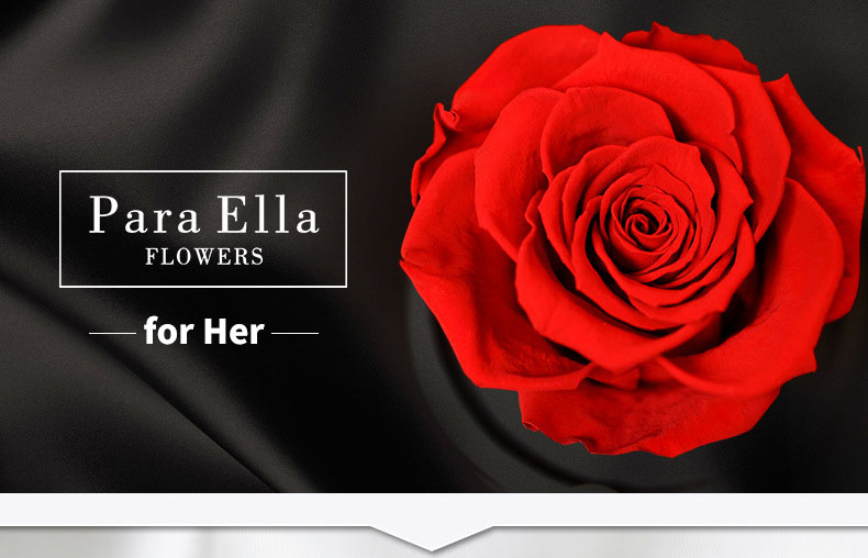 Para Ella Preserved Fresh Rose Flower with Fallen Petals in Glass Dome on a Wooden Base with Remote Control Light for Best Gift