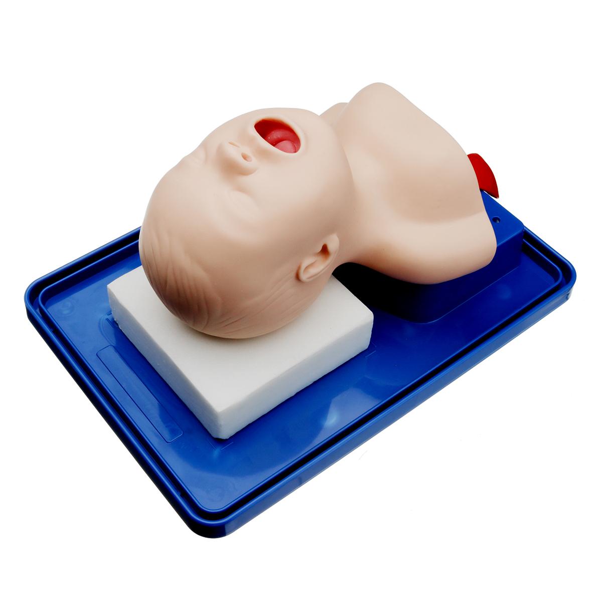 Intubation Manikin Study Teaching Model Baby Infant Airway Management Trainer Medical Model 31